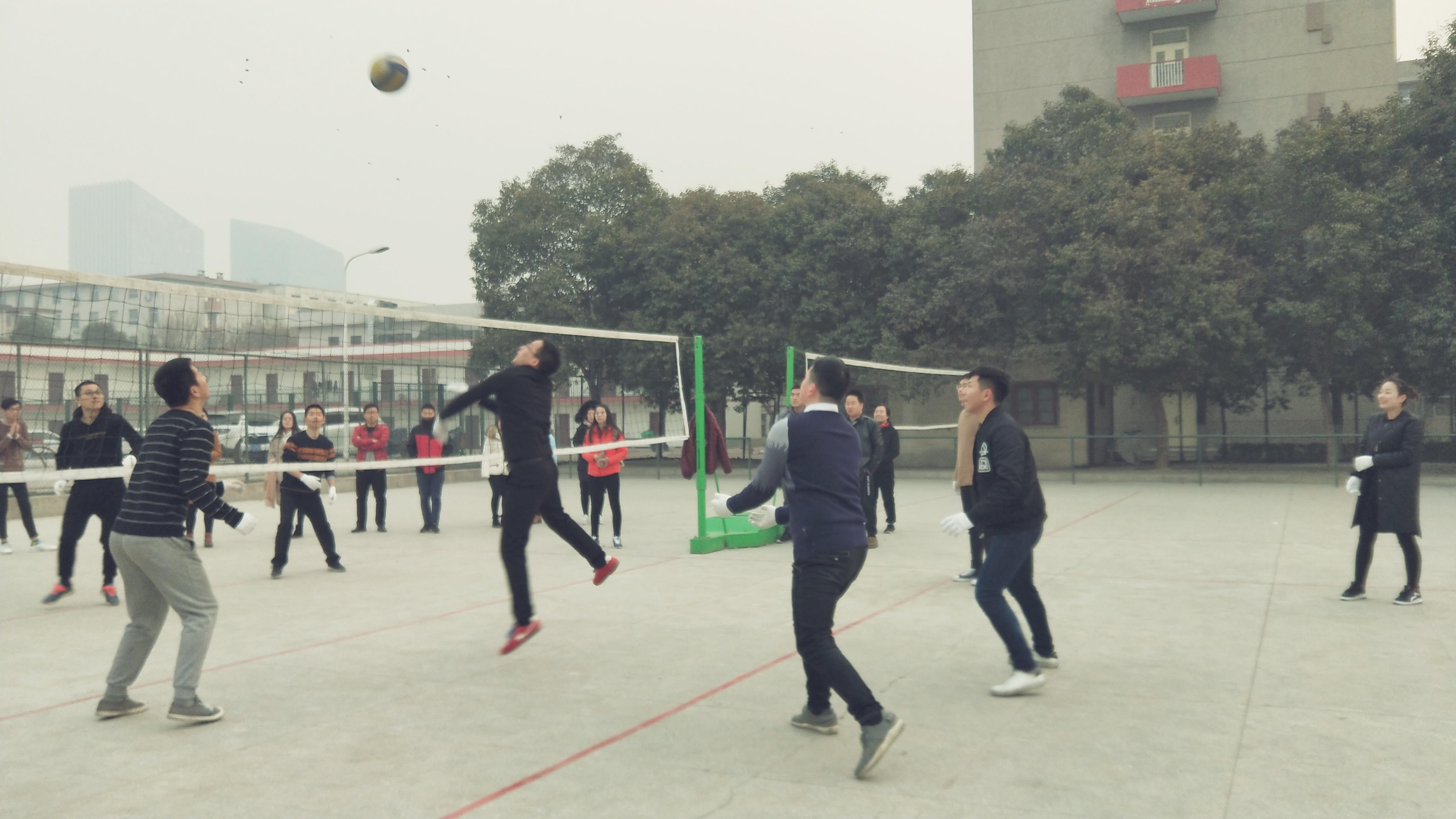 网中网_第二届冬季排球赛开始啦!精彩瞬间看这里!